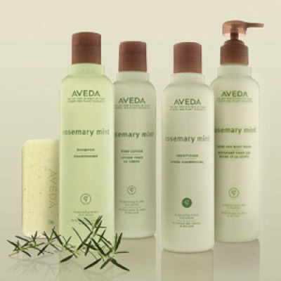 Rosemary Mint Family by Aveda